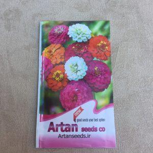 بذر گل آهار رنگی